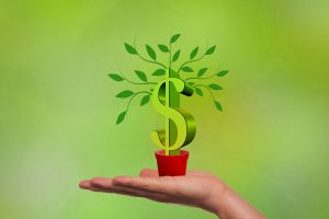 Planta con dollar
